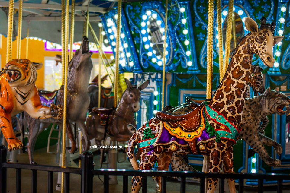 The Endangered Species Carousel at Turtle Back Zoo