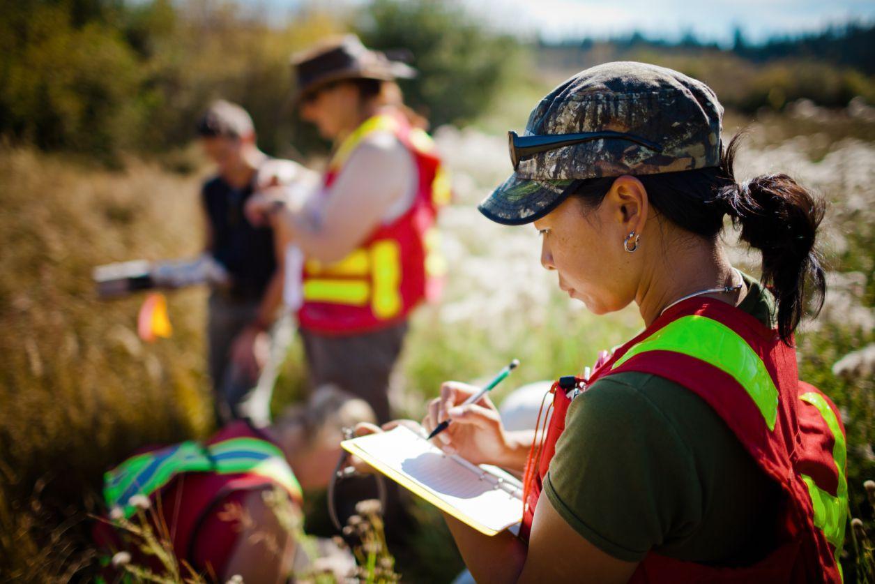 top 9 jobs for environmental studies  science majors