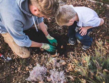 how to create more acidic soil