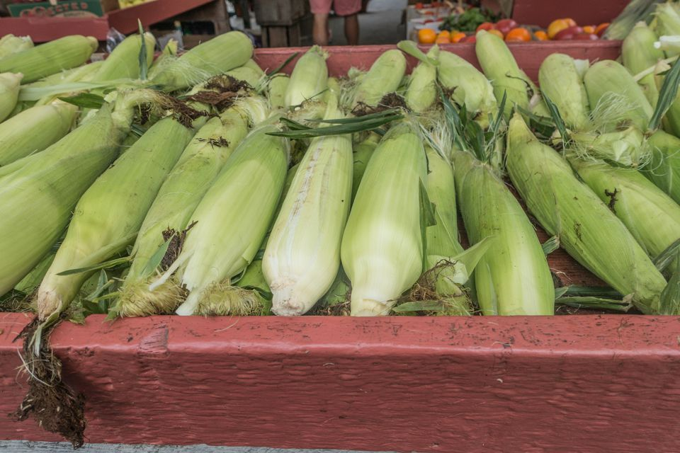Sweet Corn at the Market