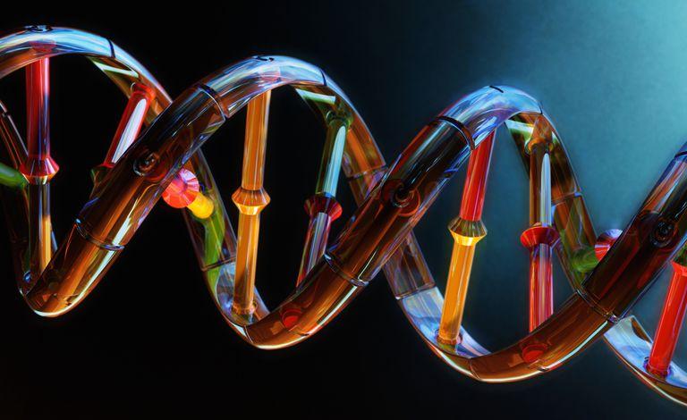 I got Questionable DNA Quiz Knowledge. DNA Biochemistry Quiz