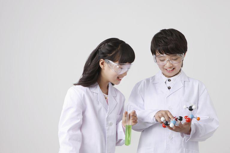 I got You're a 4th Grade Science Survivor. 4th Grade Science Quiz