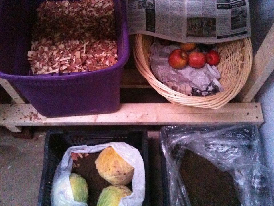 The contents of a root cellar