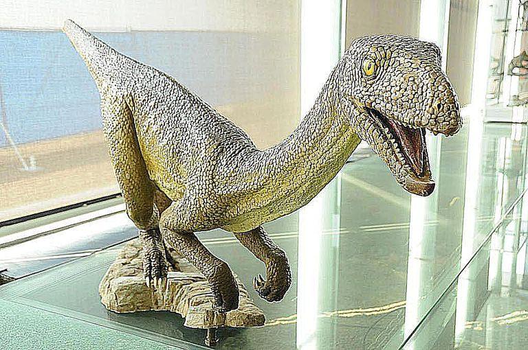silesaurus