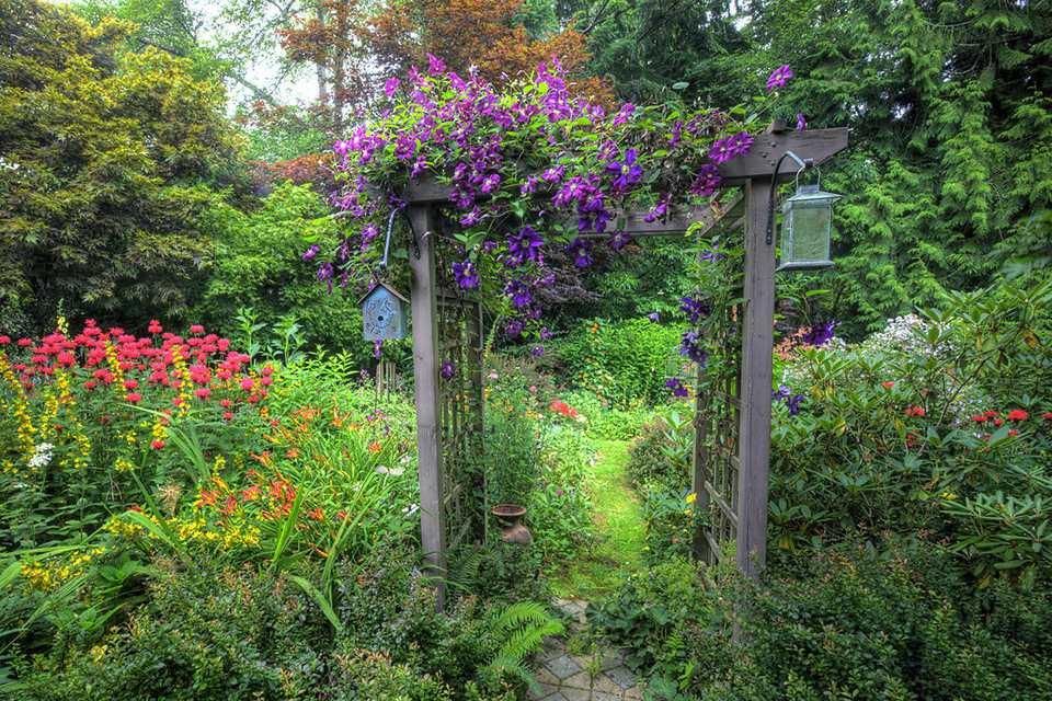 Image: garden arbor.