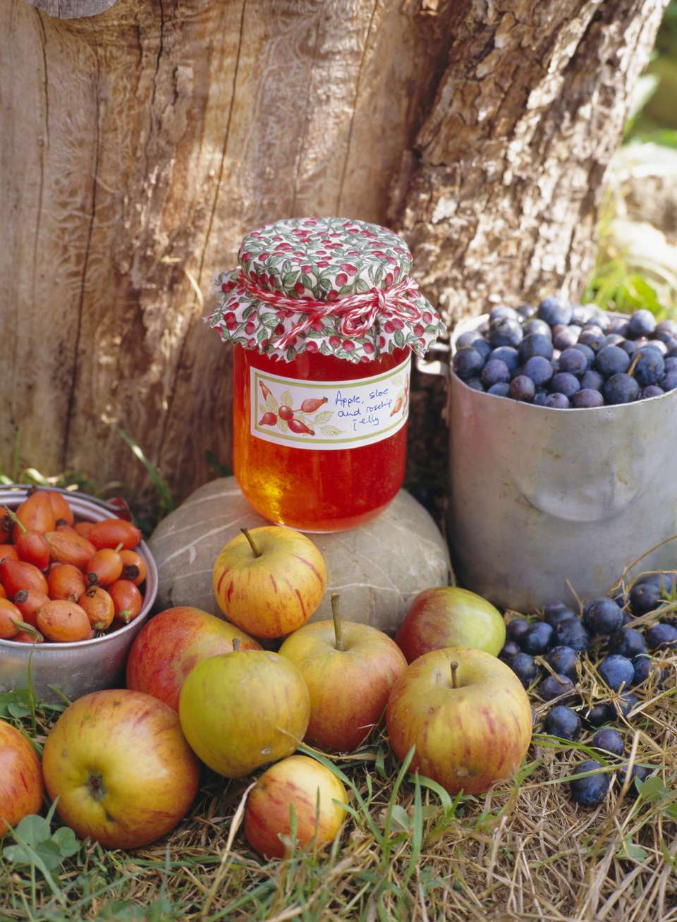 Rose hip jelly and fruit