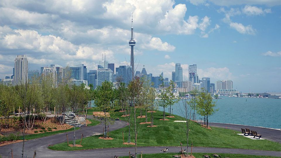 View from the Summit at Trillium Park
