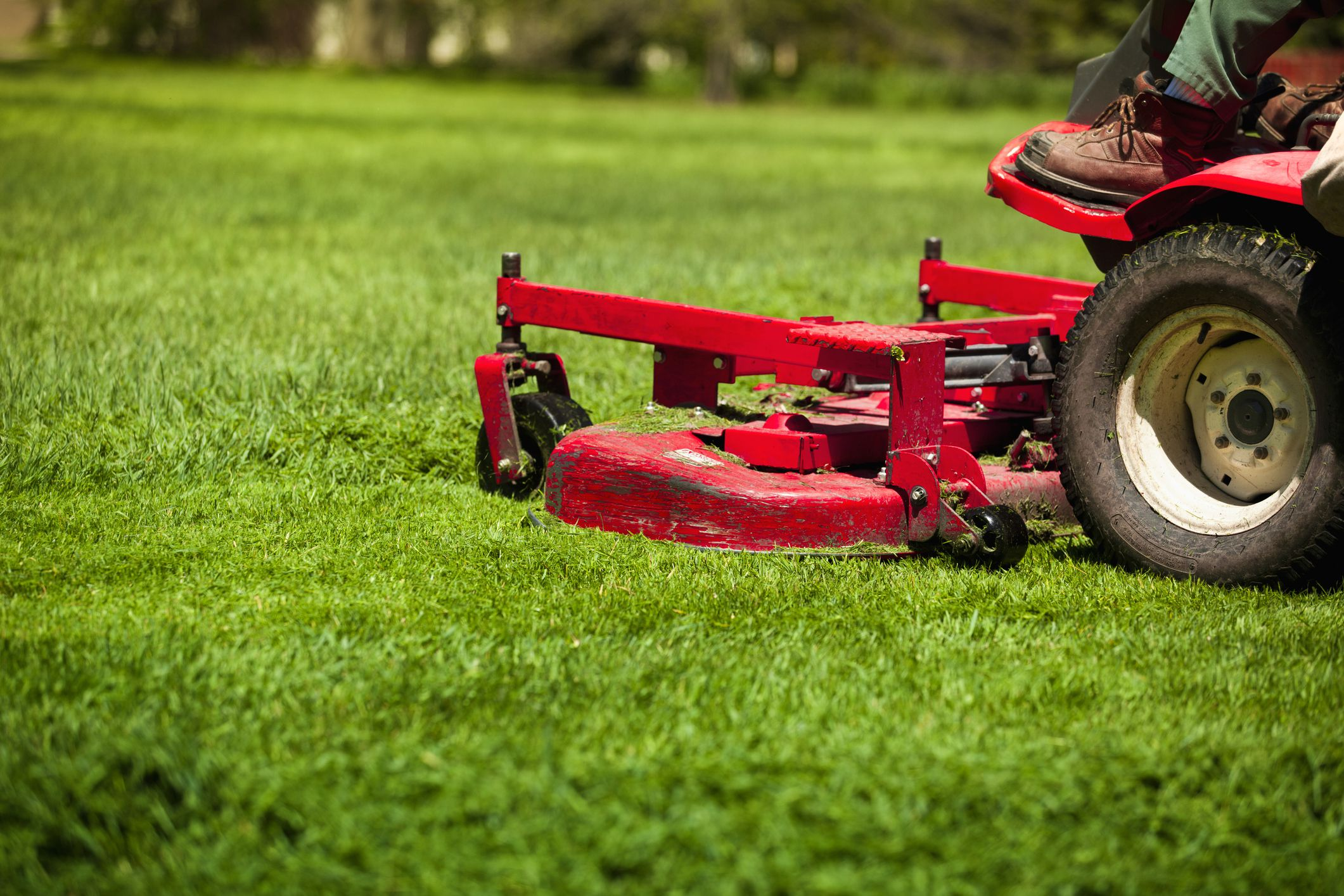 The biggest lawn care mistake is cutting too short for Lawn mower cutting grass