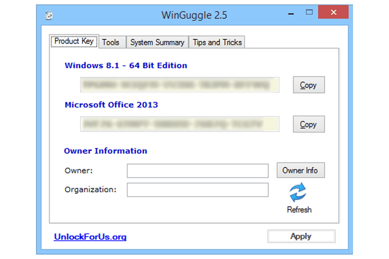 Screenshot of WinGuggle v2.5 in Windows 8