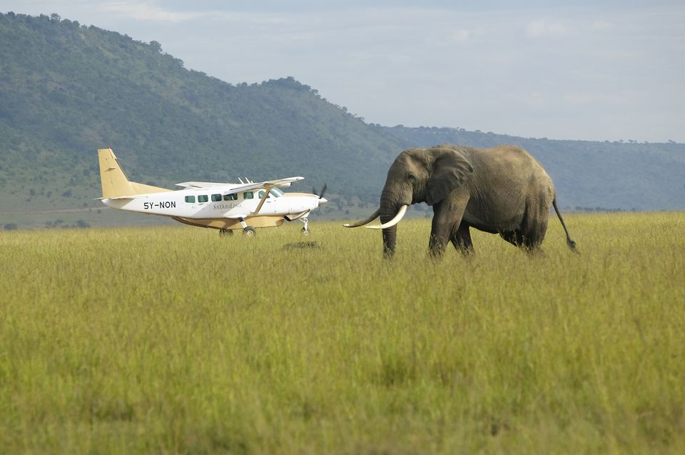 A Country-by-Country Guide to African Airlines