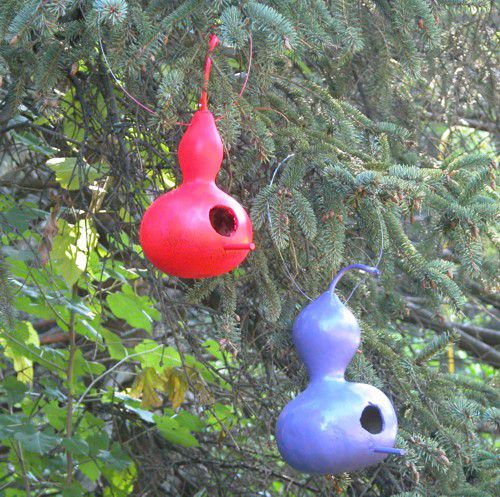 Gourd Bird Houses - Finishing and Hanging Gourd Bird Houses