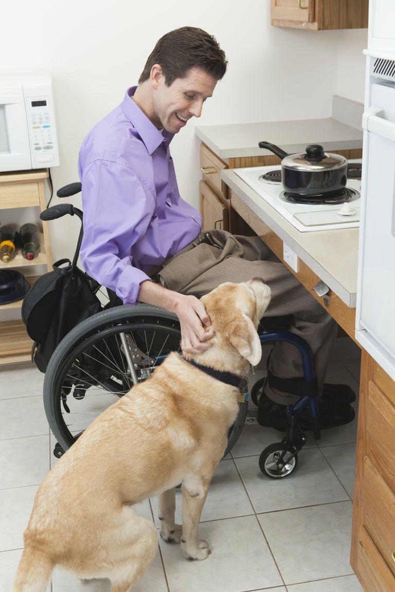 Wheelchair-bound man with service dog