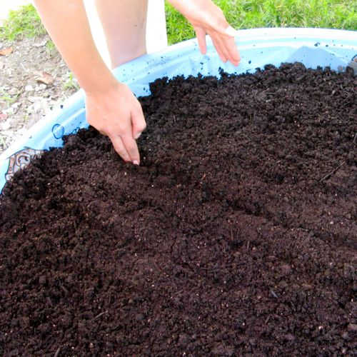 container gardening picture of getting kiddie pool garden planter ready for planting seeds