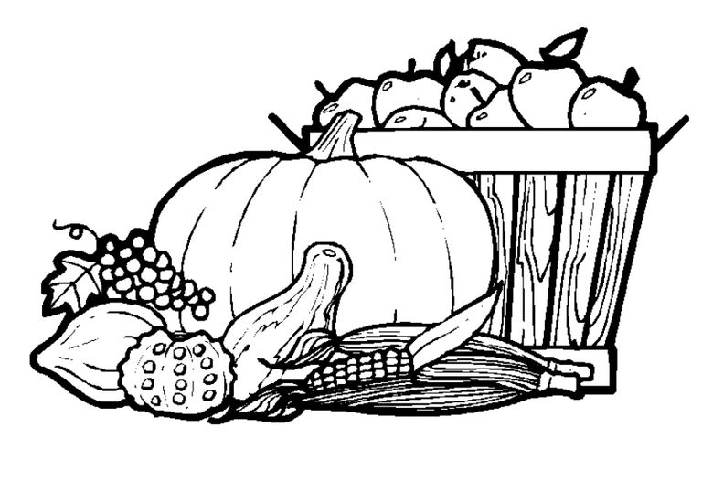 217 Thanksgiving Coloring Pages For Kids Coloring Pages Free