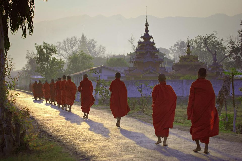 Buddhist monks walking down road, rear view