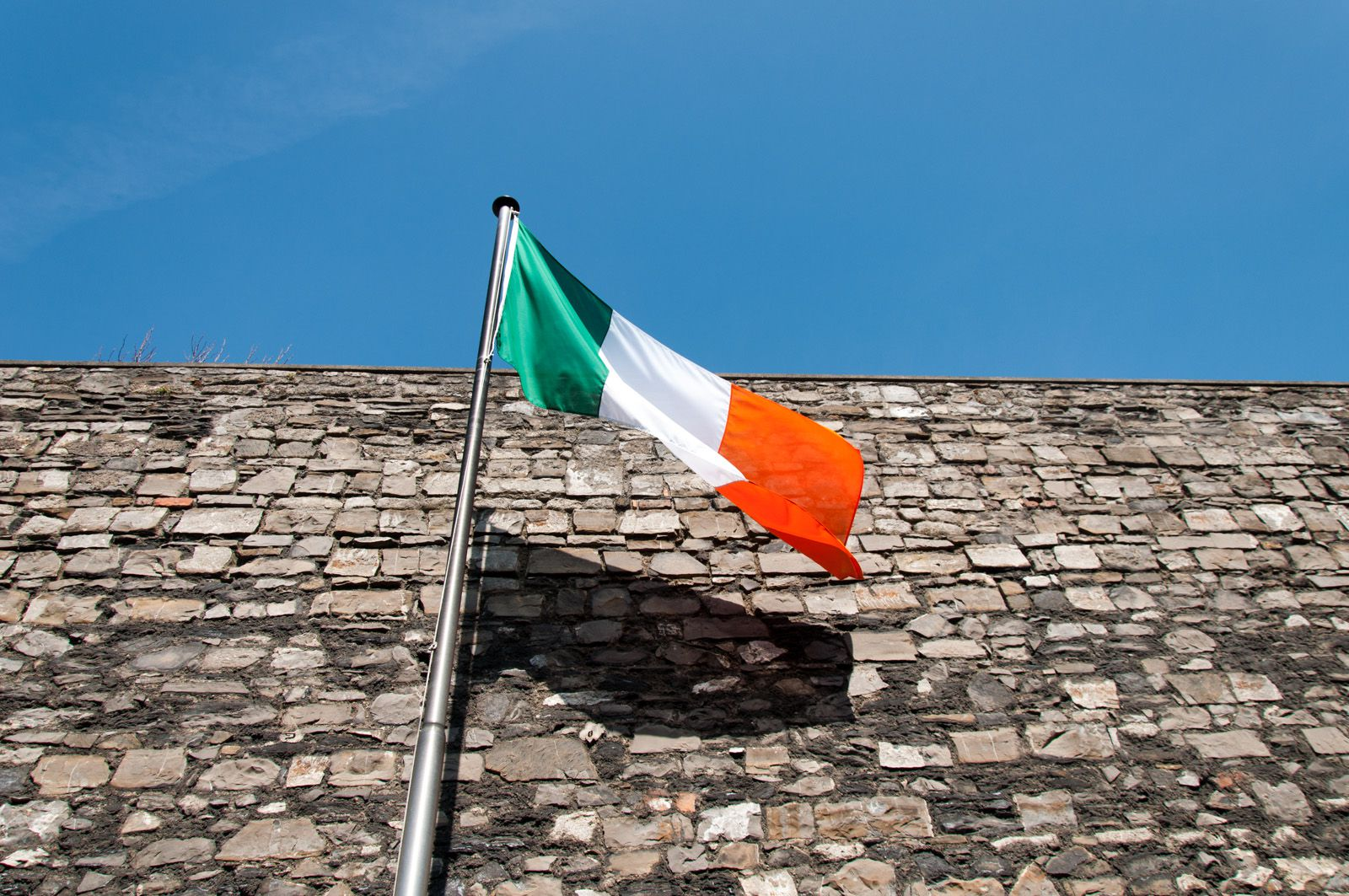 8 interesting facts about the irish american population