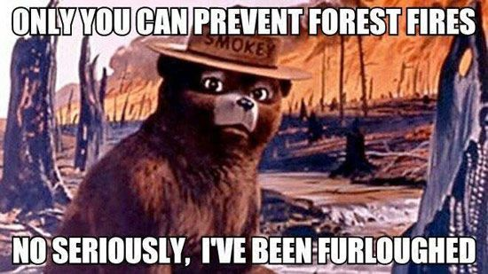 smokey-the-bear-furloughed-56a753f25f9b5