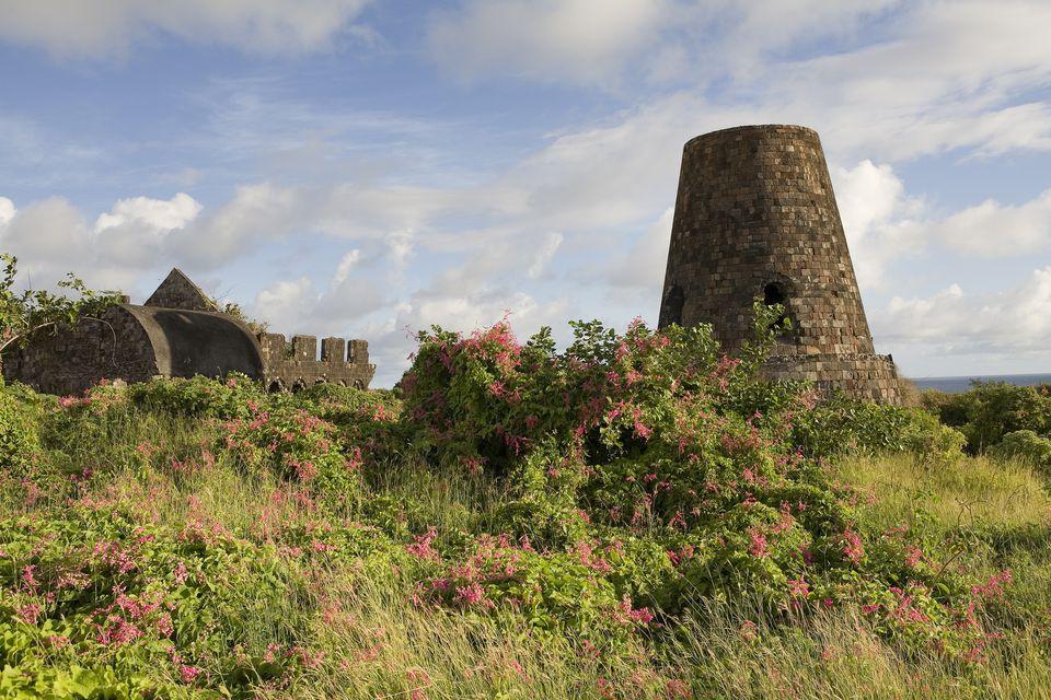 Ruins of the Hamilton estate on Nevis