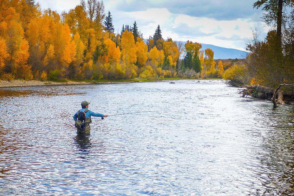 Saskatchewan fly fishing