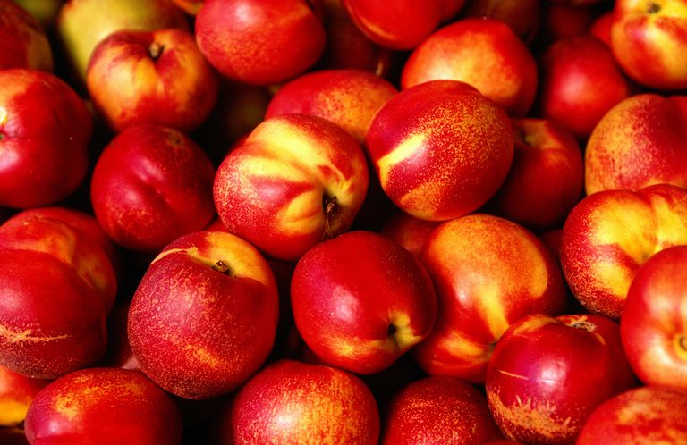 Bunch of Nectarines